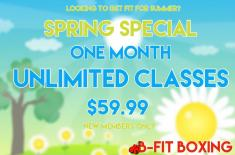 Spring special Concord Boxing Gyms 3 _small